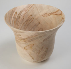 spalted ambrosia silver maple